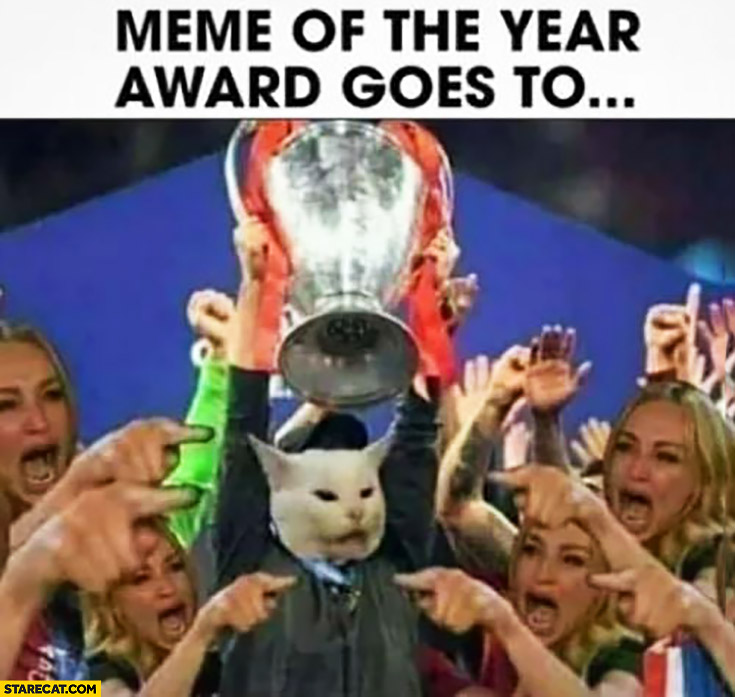 Meme of the year award goes to woman poining at the cat 2019