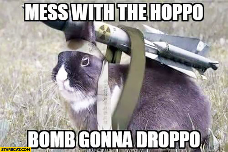 Mess with the hoppo bomb gonna droppo