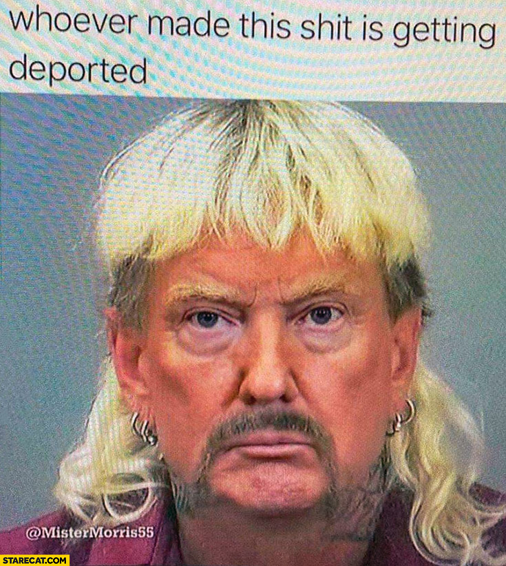 Mexican Donald Trump whoever made this shit is getting deported