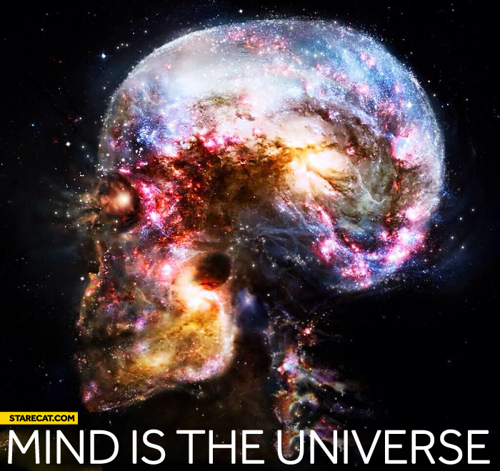 Mind is the universe