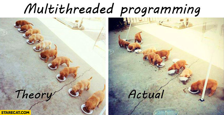 Multithreaded programming: theory vs actual puppies eating from bowls mess