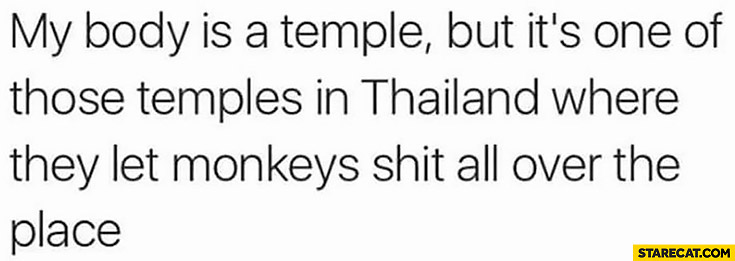 My body is a temple but it's one of those temples in Thailand where they let monkeys shit all over the place