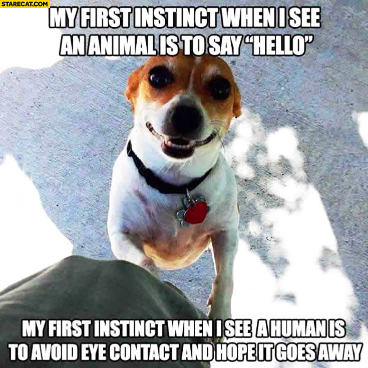 My first instinct when I see an animal is to say hello. When I see humans is to avoid eye contact and hope it goes away