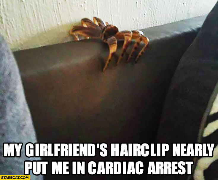 My girlfriends hairclip nearly put me in cardiac arrest spider