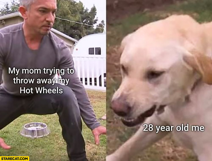 My mom trying to throw away my hot wheels, 28 year old me angry dog