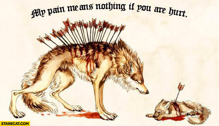 My pain means nothing if you are hurt wolves