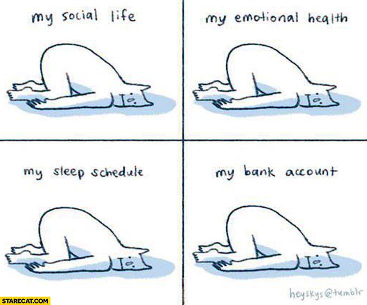 My social life, my emotional health, my sleeping schedule, my bank account