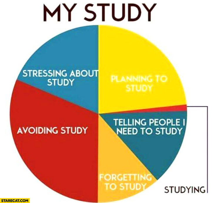 My study graph: stressing about study, planning to study, telling people I need to study, forgetting to study, avoiding study