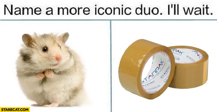 Name a more iconic duo, I'll wait. Hamster duct tape adhesive tape