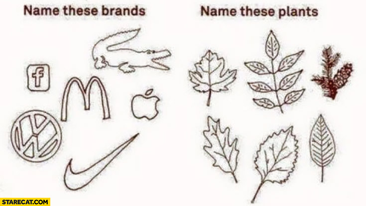 Name these brands vs name these plants