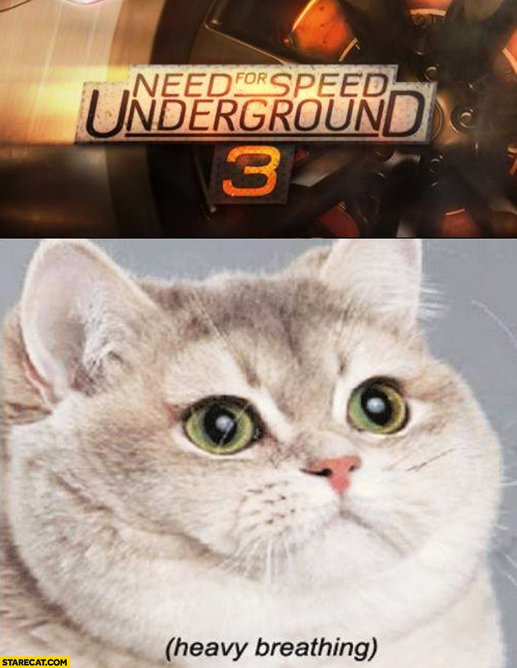 Need for speed underground 3 heavy breathing cat
