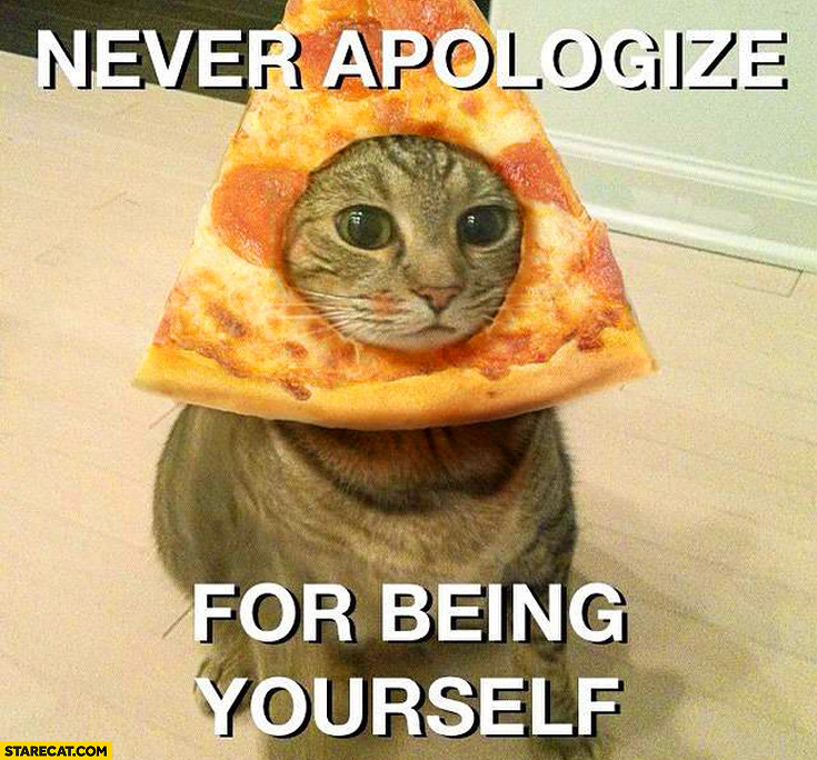 Never apologize for being yourself cat pizza on head