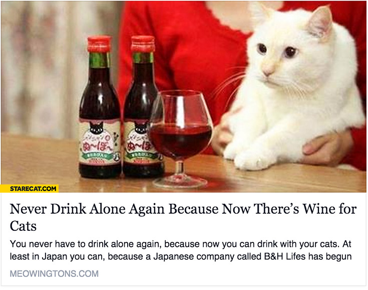 Never drink alone again now there's wine for cats