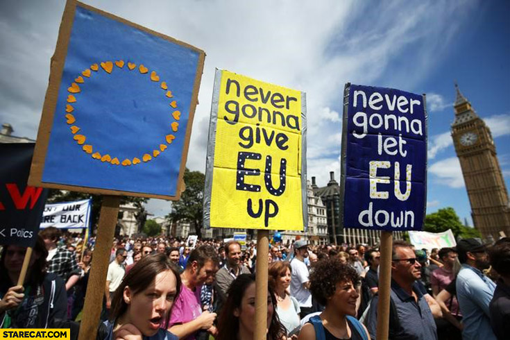Never gonna give EU up, never gonna let EU down Brexit protests in UK signs