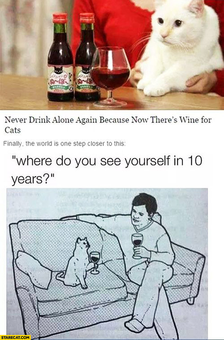 New wine for cats one step closer to where do you see yourself in 10 years