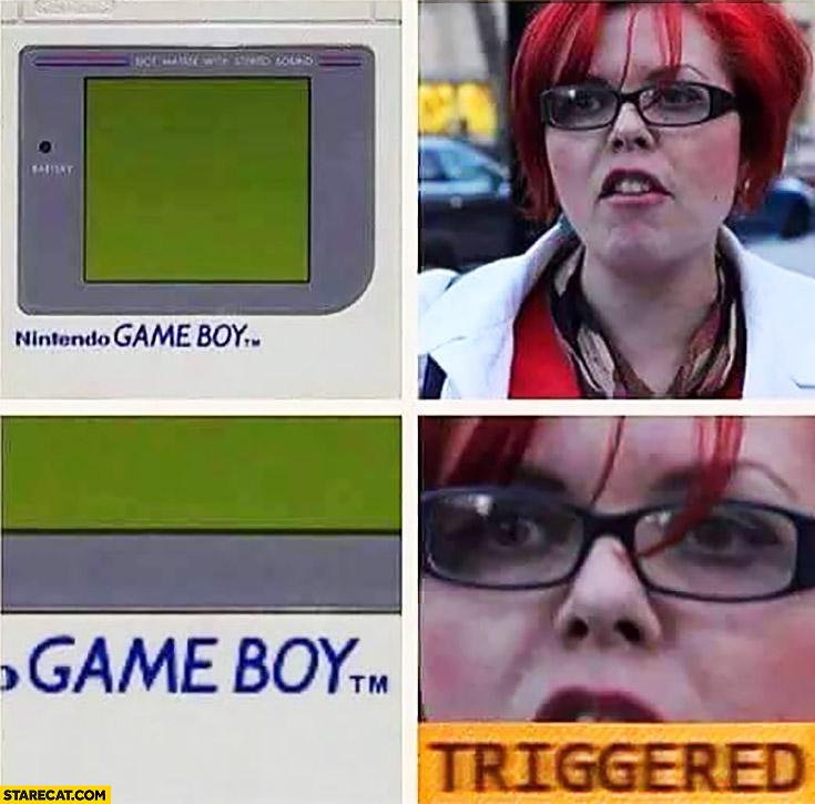 Nintendo Game Boy feminist triggered