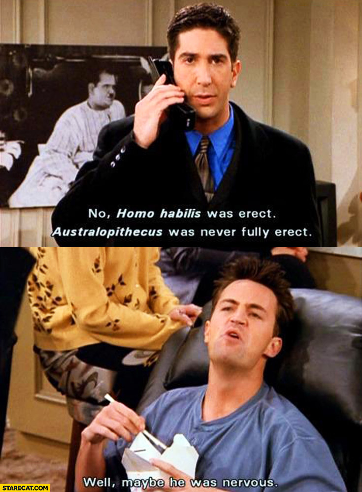 No, homo habilis was erect, australopithecus was never fully erect. Well, maybe he was nervous Ross Chandler Friends TV show