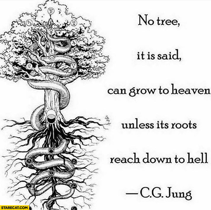 No tree, it is said, can grow to heaven unless it's roots reach down to hell. CG Jung quote