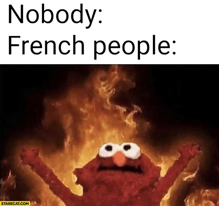 Nobody: French people panic when Notre Dame is burning on fire