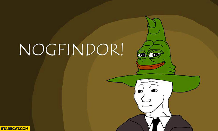 Nogfindor no GF girlfriend meme hat Harry Potter