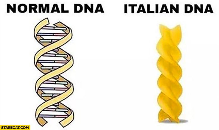 Normal DNA, Italian DNA comparison