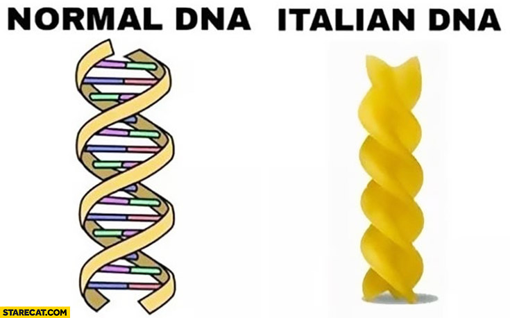 Normal DNA vs Italian DNA spaghetti