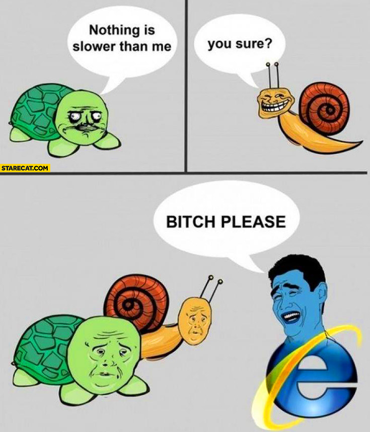 Nothing is slower than me turtle snail internet explorer