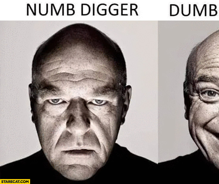 Numb digger, dumb n… word play