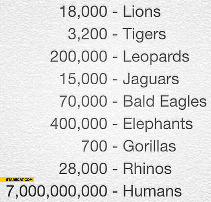 Number of animals compared to number of humans
