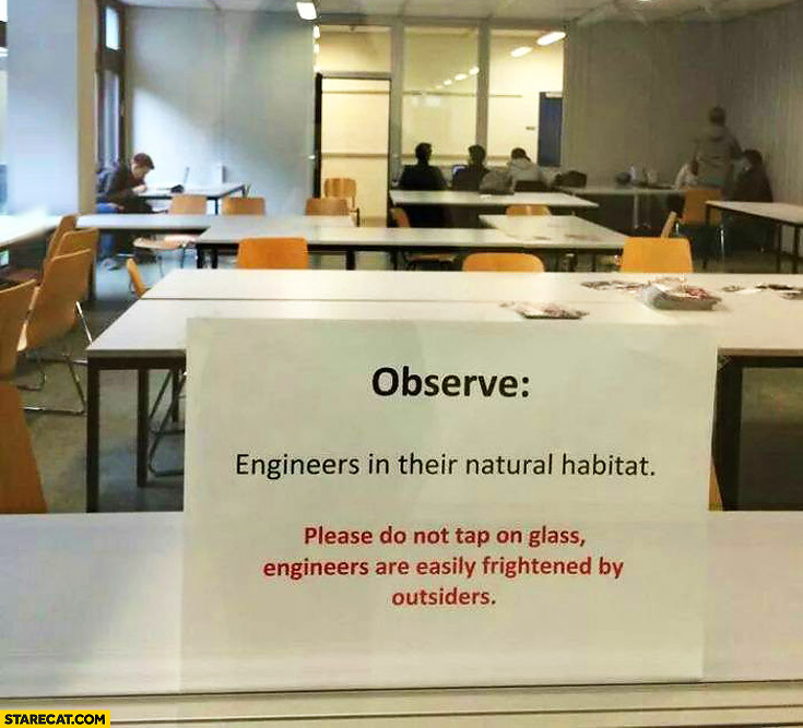 Observe engineers in their natural habitat, please do not tap on glass engineers are easily frightened by outsiders