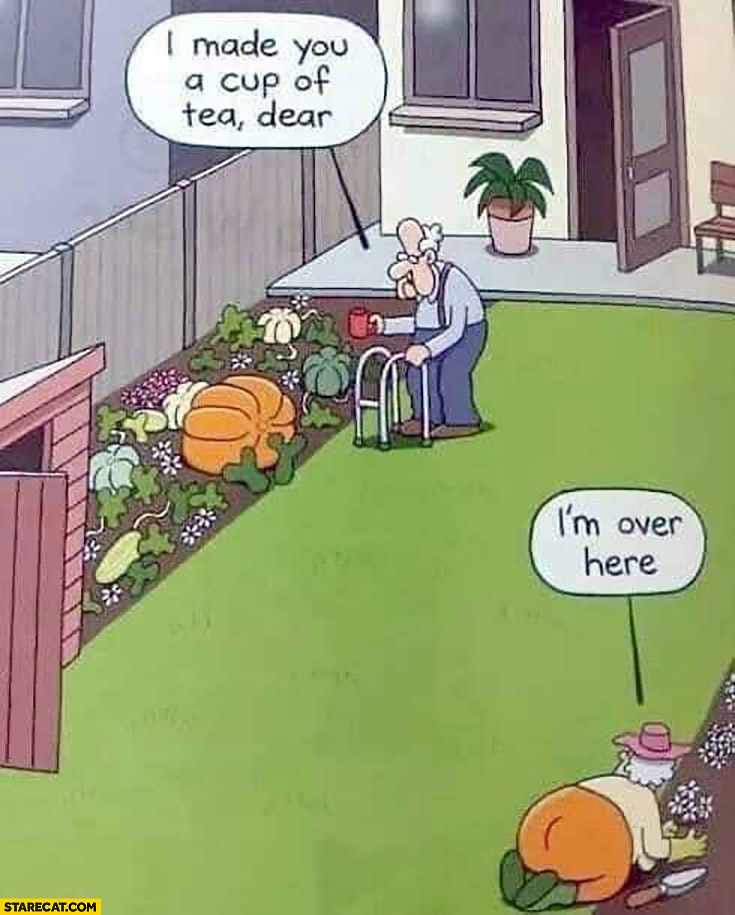 Old man pumpkin I made you a cup of tea dear I'm over here lookalike