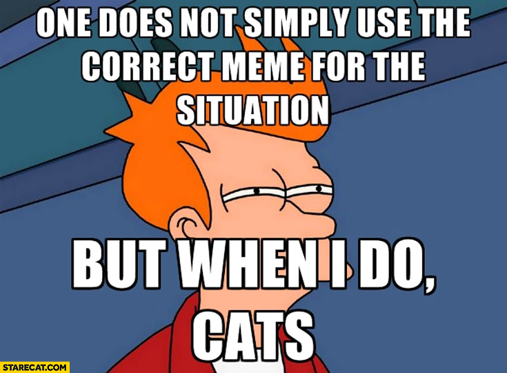 One does not simply use the correct meme for the situation but when I do cat