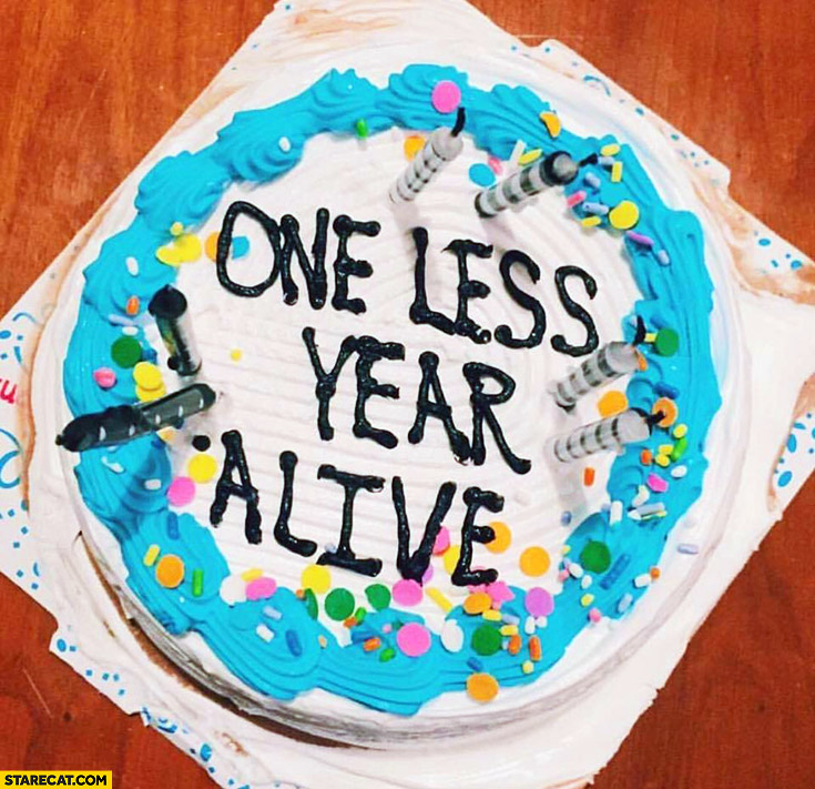 One less year alive. Birthday cake quote gift