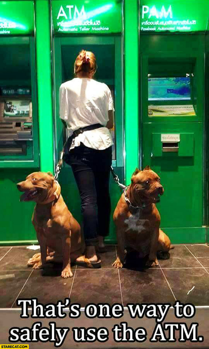One way to safely use the ATM: two huge dogs guarding