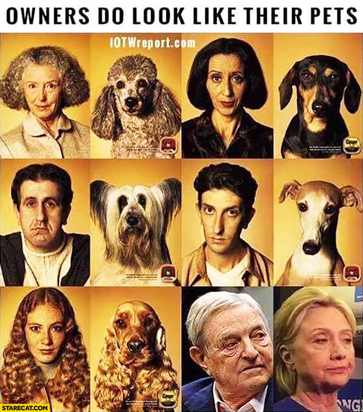 Owners do look like their pets George Soros Hillary Clinton