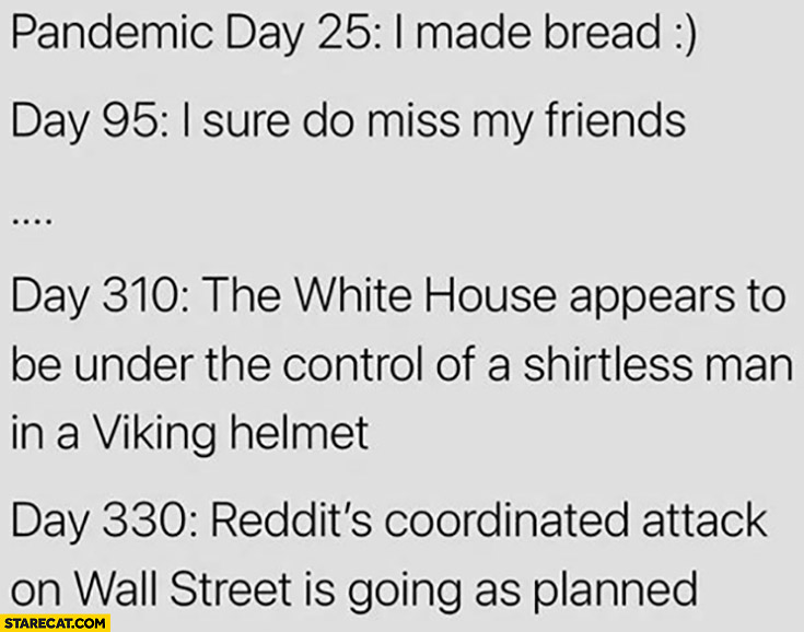 Pandemic day 25: I made bread, day 310 white house under control of shirtless man in a viking helmet, day 330 reddits coordinated attack on wall street