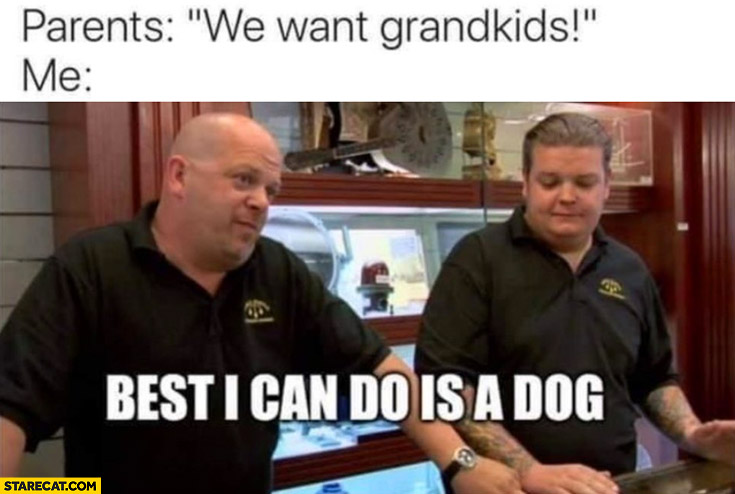 Parents we want grandkids, me: best I can do is a dog