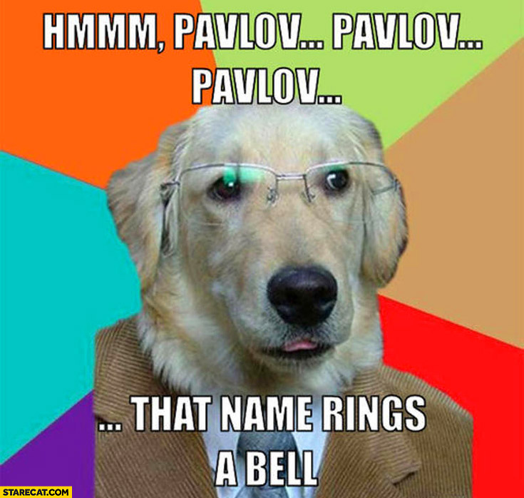 Pavlov that name rings a bell dog