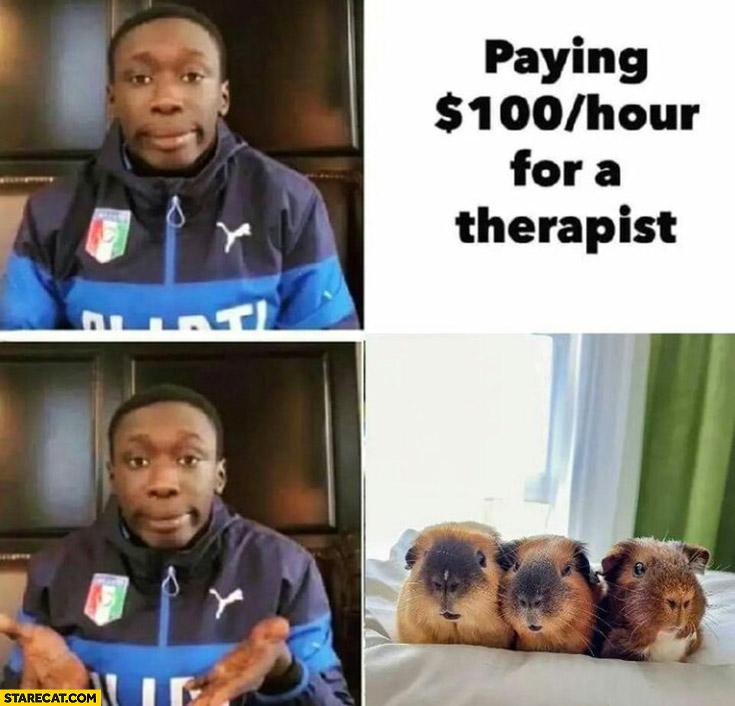 Paying 100 dollars an hour for a therapist when you could just get guinea pigs
