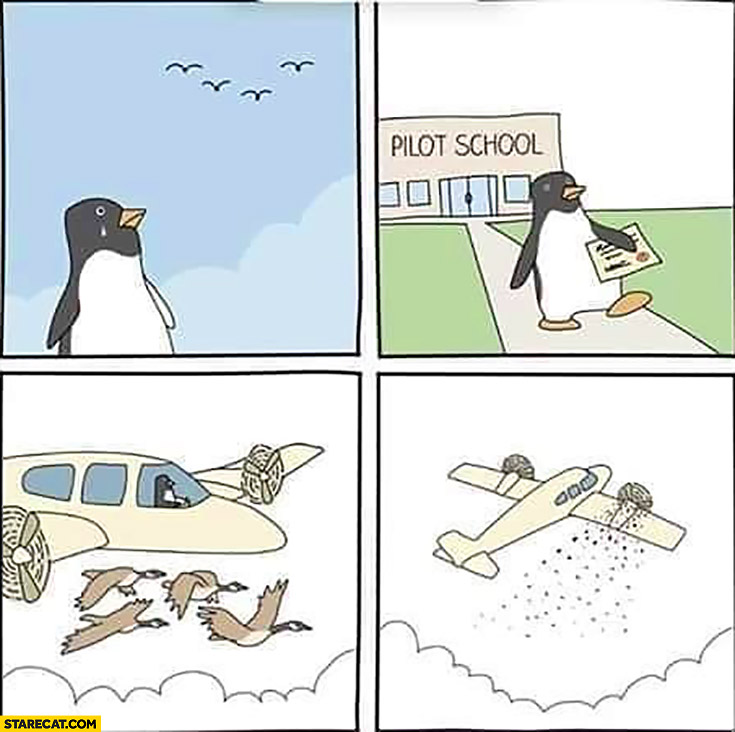 Penguin cannot fly goes to pilot school becomes a pilot comic