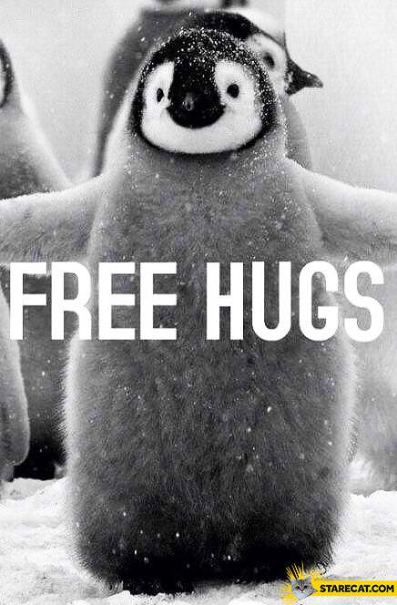 Penguin free hugs