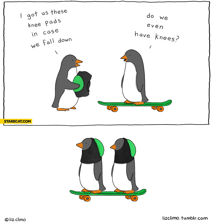Penguins skateboard longboard I got these knee pads in case we fall down do we even have knees