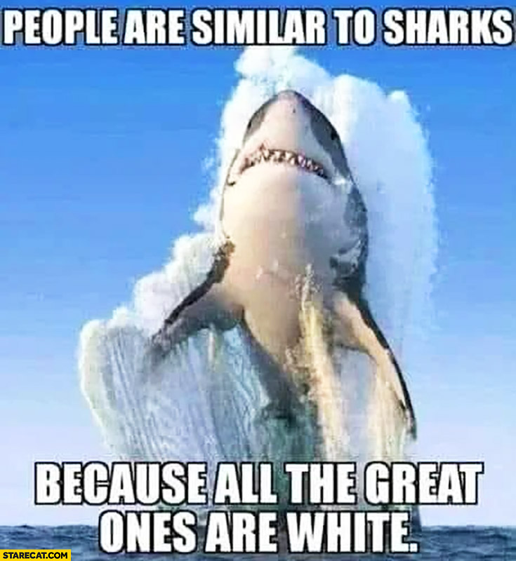 People are similar to sharks because all the great ones are white