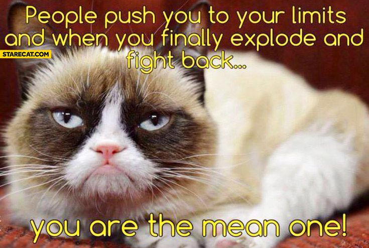 People push you to your limits and when you finally explode and fight back you are the mean one Grumpy Cat