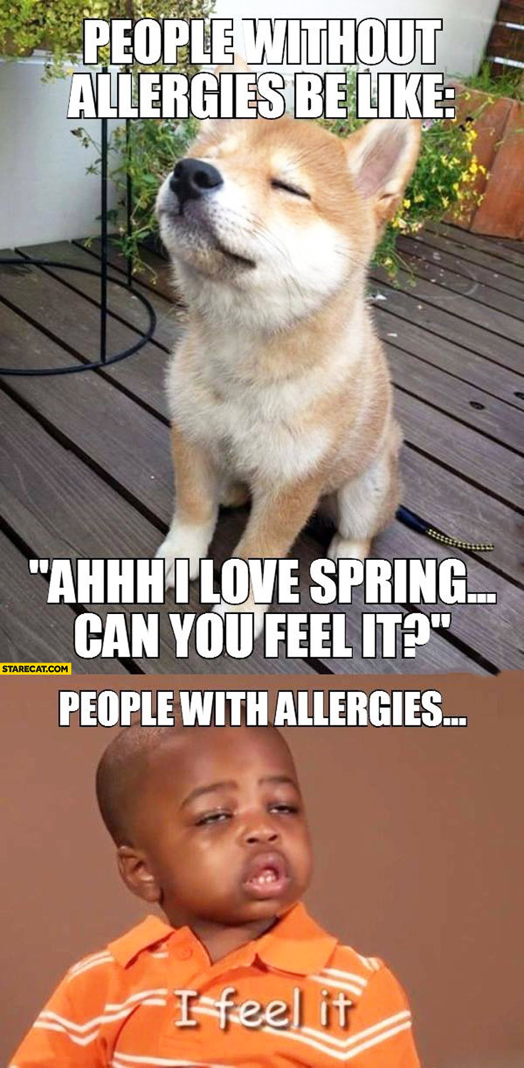 People without allergies be like can you feel the spring? People with allergies: I feel it