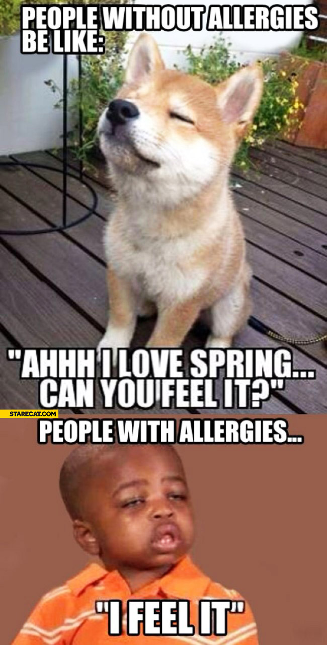 People without allergies I love spring can you feel it people with allergies I feel it