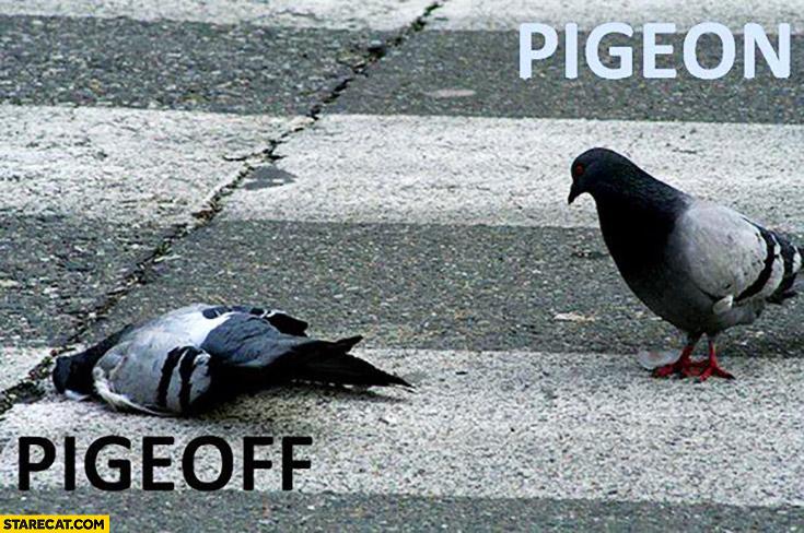 Pigeon pigeoff dead word play