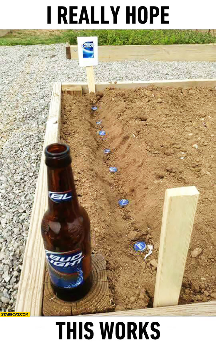 Planting Bud Light caps, I really hope this works