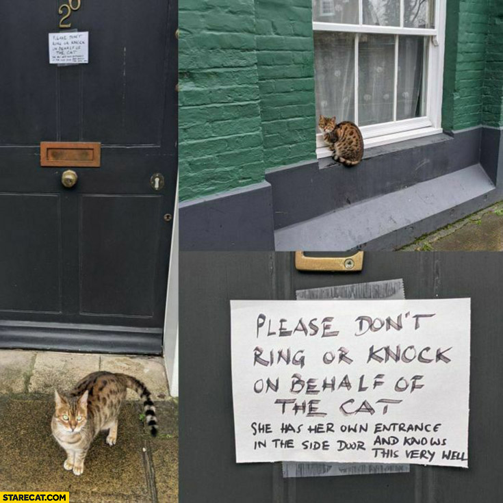 Please don't ring or knock on behalf of the cat message warning