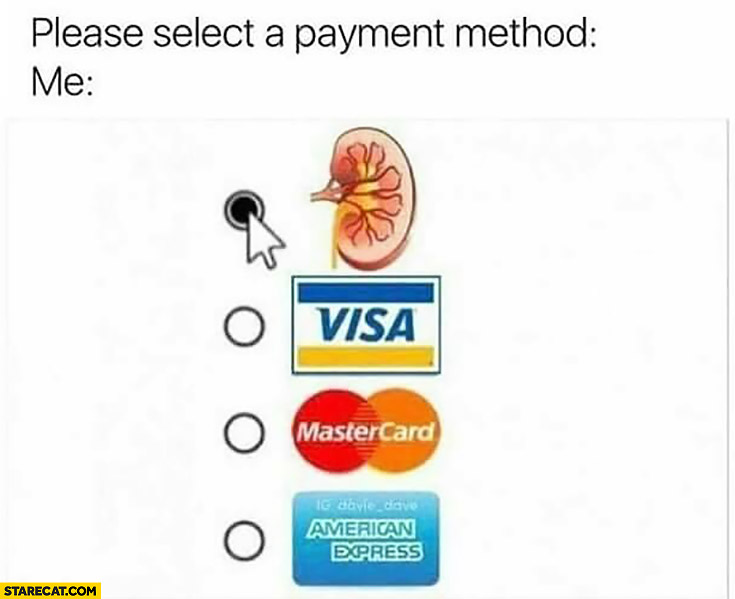 Please select a payment metod. Me: I pay with my kidney
